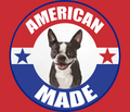 Rramerican_made_boston_terrier_comment_152581_thumb