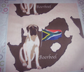 Rrrboerboel_with_map_of_south_africa_comment_152601_thumb