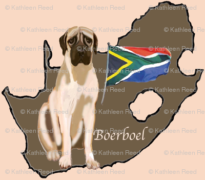Boerboel Mastiff from South Africa
