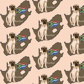 Rrrboerboel_with_map_of_south_africa_shop_thumb