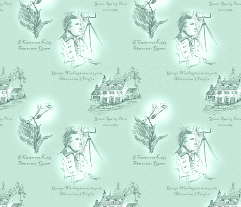 Annandale, Virginia - Springwater fabric by glimmericks on Spoonflower - custom fabric