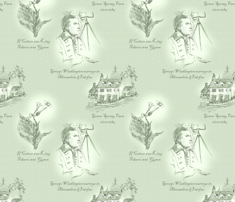 Annandale, Virginia - Plantation Mint fabric by glimmericks on Spoonflower - custom fabric
