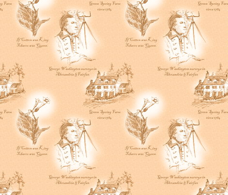 Annandale, Virginia - Hot Buttered Rum fabric by glimmericks on Spoonflower - custom fabric