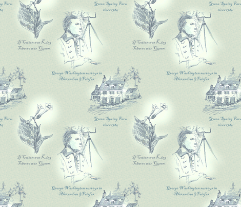 Annandale, Virginia fabric by glimmericks on Spoonflower - custom fabric