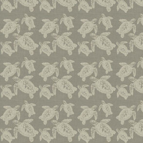 Turtles in Grey