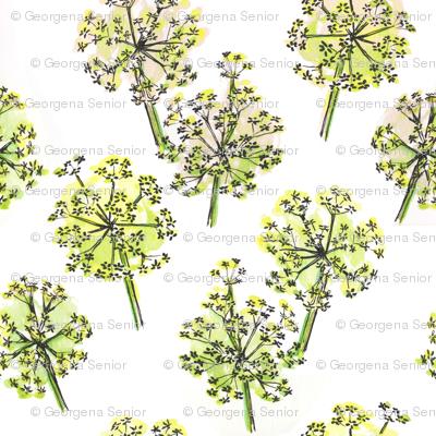 Spring Alliums