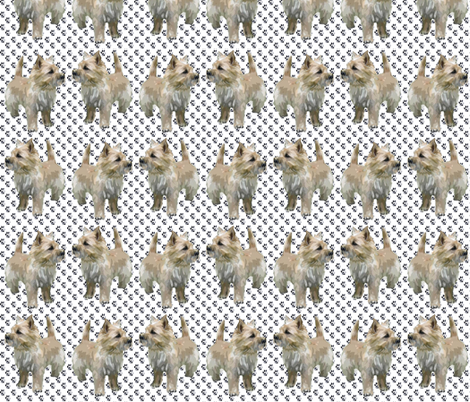 Cairn Terrier Paws  fabric by dogdaze_ on Spoonflower - custom fabric