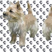 Rrrcaairn_terrier_pawprints_shop_thumb