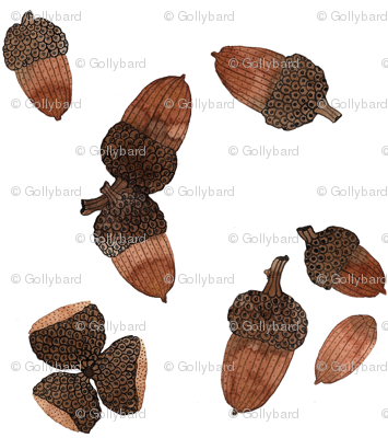 Acorns - Woodland Collection