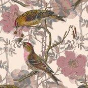 Rbirds2_shop_thumb