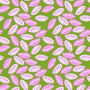 feuille rose fond vert S