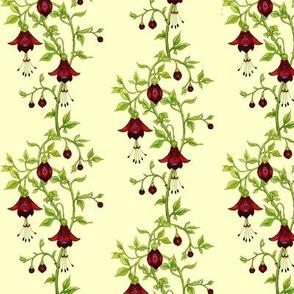 Fuchsia fantasy_red
