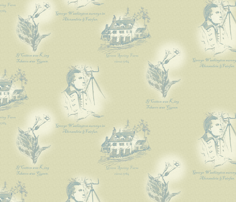 Annandale_Virginia II fabric by glimmericks on Spoonflower - custom fabric