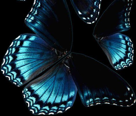 Rrbutterfly_wings_shop_preview