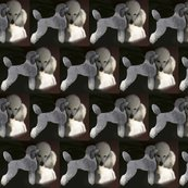 Rrtwo_poodles2_shop_thumb