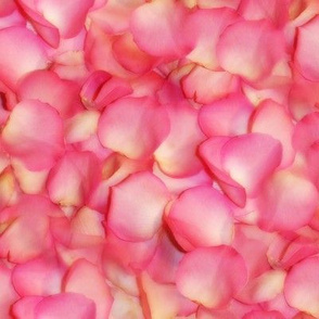 Jackie's Petals