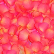Rrrpetals-001_shop_thumb