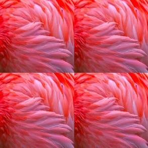 flamingo_fabric_1