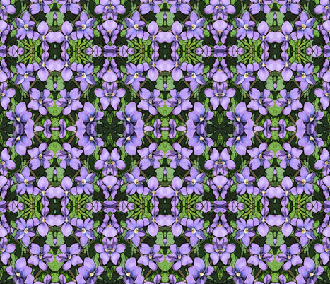 violets fabric by penelopeventura on Spoonflower - custom fabric