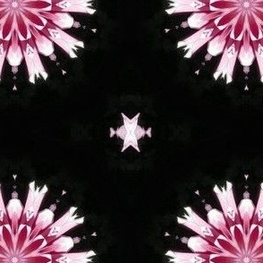 Dahlia's Wall Flower