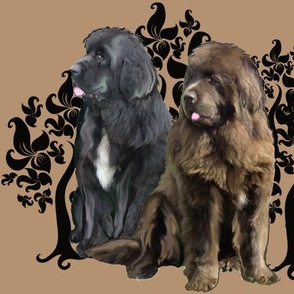 brown and black Newfoundland dog fabric