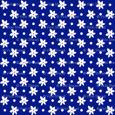 Navy01_150dpi