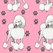Rrpink_poodles_shop_thumb