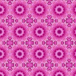Dahlia Pattern 2