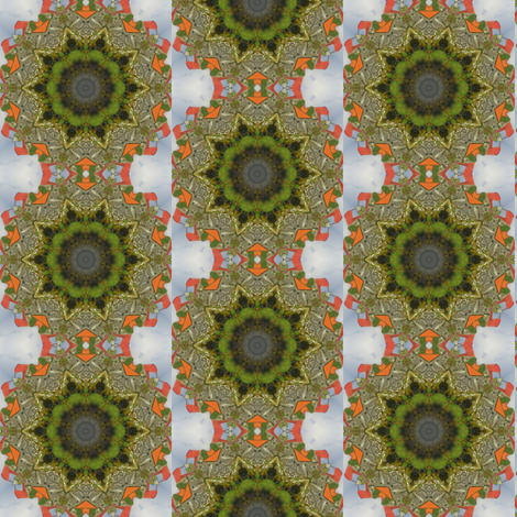 Irish Mandala - An Irish Farm on Inishmore Island, Ireland fabric by dovetail_designs on Spoonflower - custom fabric
