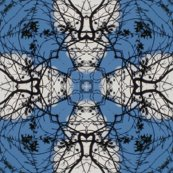 Rrrrrrrclouds_8606_kaleidoscope7_shop_thumb