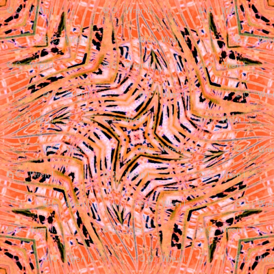 Coral Zebra Play