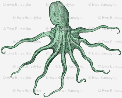 octopus - green large scale