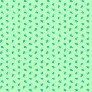 seeds - mint
