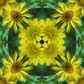 Rrryellow_daisies__kaleidos_1_shop_thumb