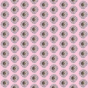 Polka Dots Go Wild