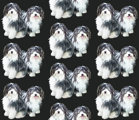 Rrhavanese2_shop_preview
