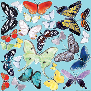 Splashy Butterfly Wall Decals