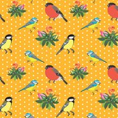Rrbirdie_polka-dot_orange.ai_shop_thumb