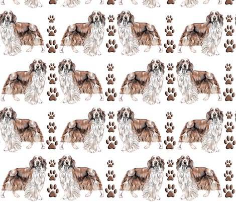 Rrrrwelsh_springer_spaniel__shop_preview