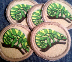 Chameleon Patrol Patches