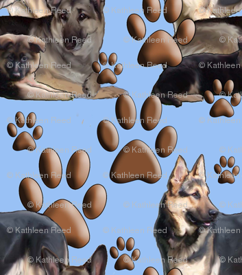 German shepherd family in blue