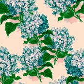 Hydrangea Blue No. I
