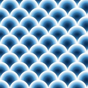 coquille bleu
