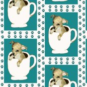 Rrrchihuahua_in_coffee_cup_shop_thumb