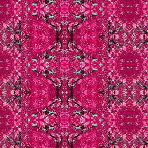 redbud pink