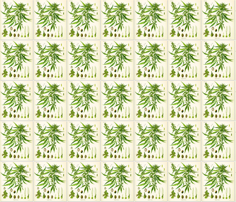 hemp-botanical-chart fabric by paxe on Spoonflower - custom fabric