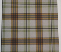 Rrmint_and_tan_tartan_comment_268567_thumb