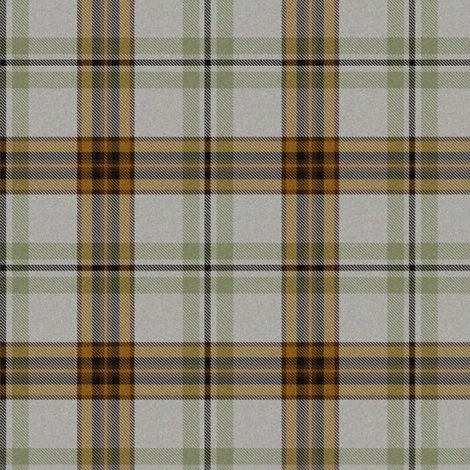Rrmint_and_tan_tartan_shop_preview