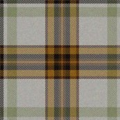 Rrmint_and_tan_tartan_shop_thumb