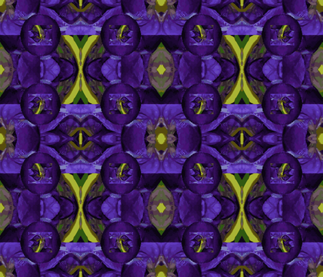 Iris unhinged fabric by anniedeb on Spoonflower - custom fabric